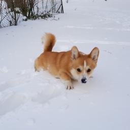 Winterzeit – Gefahrenzeit?